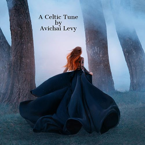 A Celtic Tune by Avichai Levy