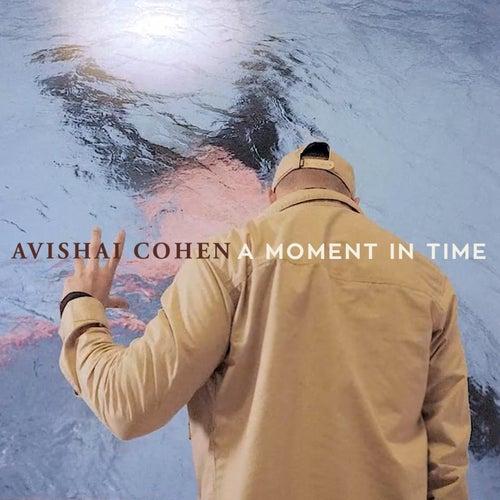 A Moment In Time von Avishai Cohen
