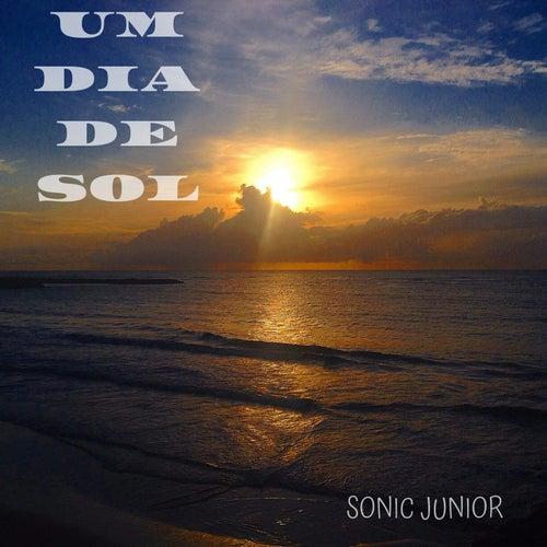 Um Dia de Sol de Sonic Junior