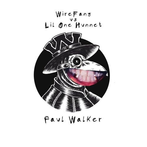 Paul Walker by WireFang