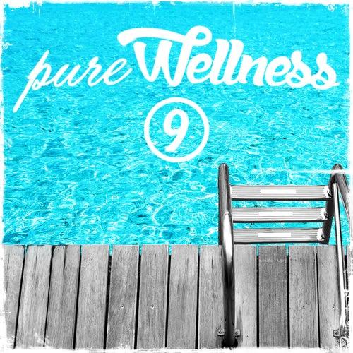 Pure Wellness, Vol. 9 von Various Artists