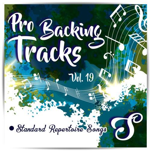 Pro Backing Tracks S, Vol.19 by Pop Music Workshop