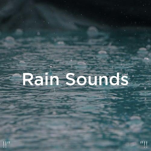 !!' Rain Sounds '!! fra Rain Sounds