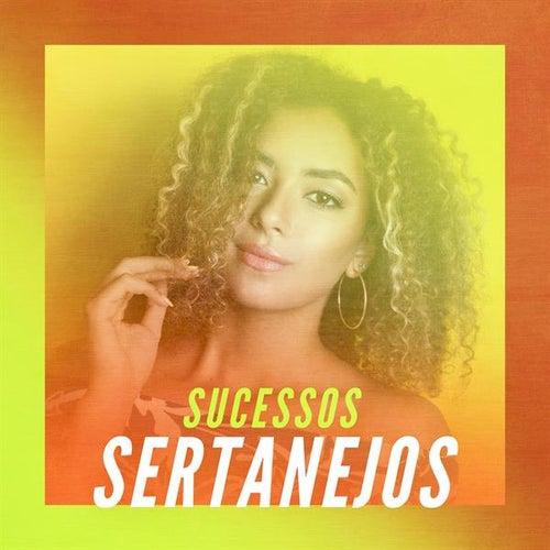 Sucessos Sertanejos de Various Artists