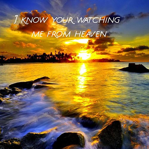 Watching Me from Heaven by M J Lynch
