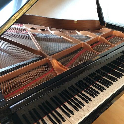 Benedikt Waldheuer (Piano Instrumental version) by Benedikt Waldheuer