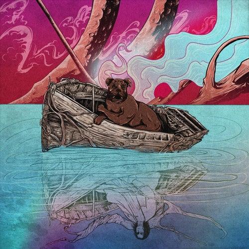 Paradox by Mathias Noise