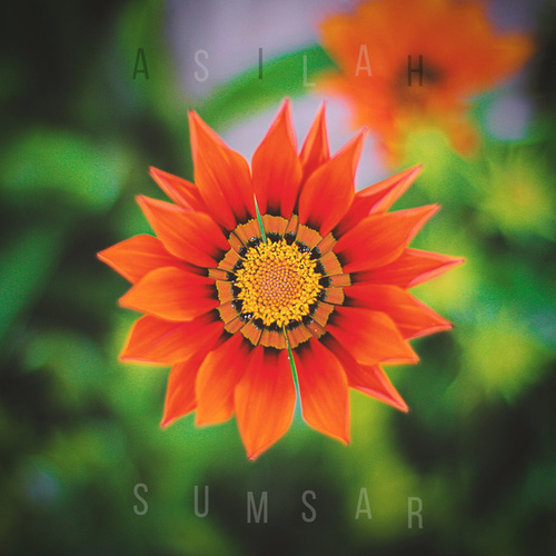 Asilah by Sumsar