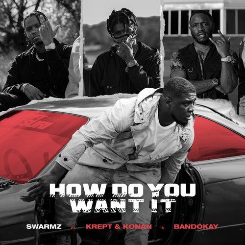 How Do You Want It de Swarmz