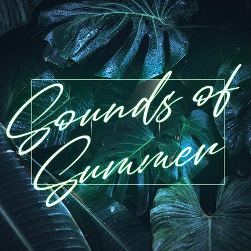 Sounds Of Summer de Various Artists