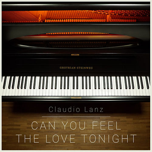 Can You Feel The Love Tonight by Claudio Lanz