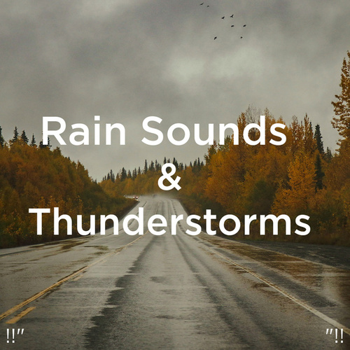 !!' Rain Sounds and Thunderstorms '!! von Rain Sounds