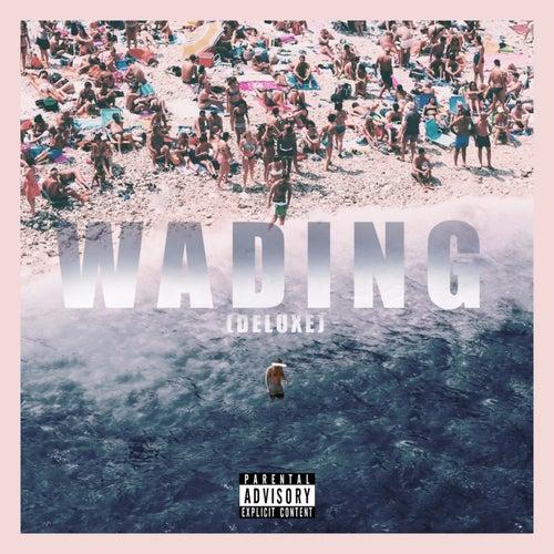 Wading (Deluxe Edition) de Kal