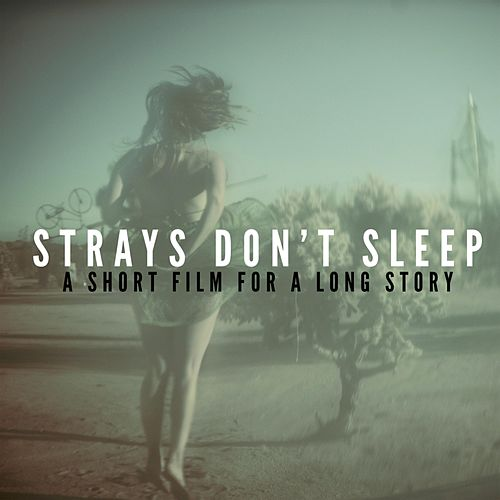 A Short Film for a Long Story by Strays Don't Sleep