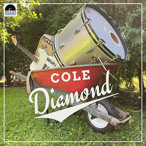 People with Real Jobs de Cole Diamond