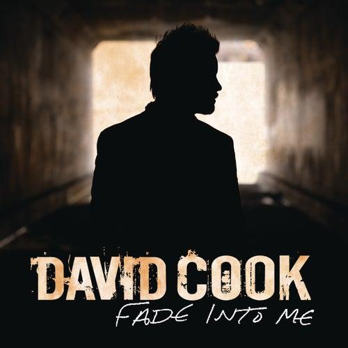 Fade Into Me de David Cook