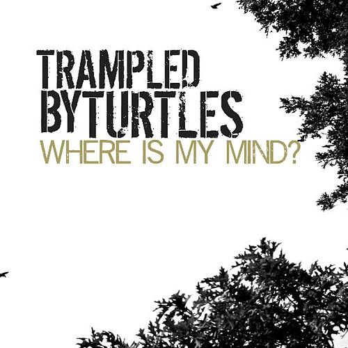 Where Is My Mind - Single de Trampled by Turtles