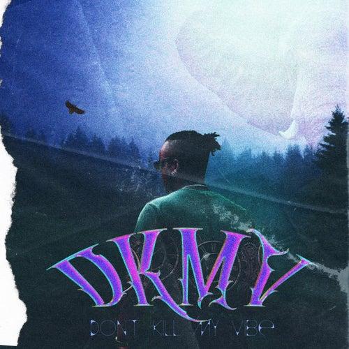 Don't Kill My Vibe von Danu