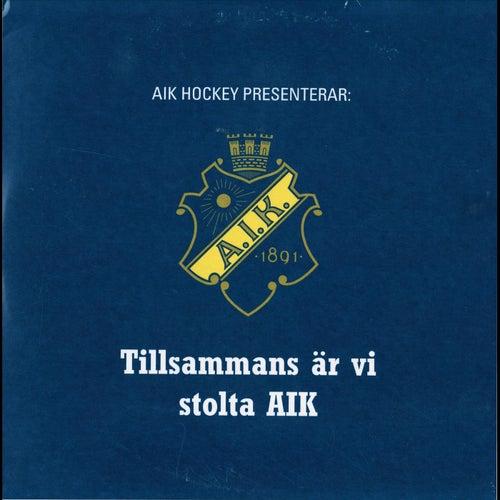 Tillsammans är vi stolta AIK von Various Artists