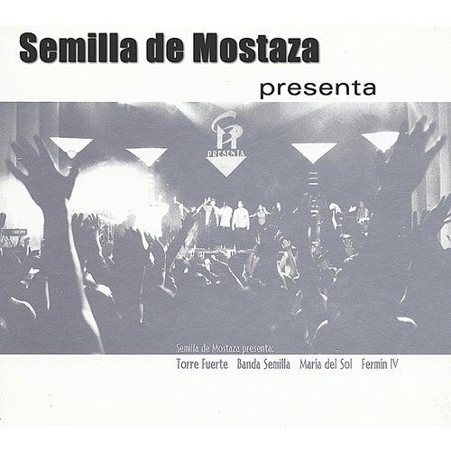 Semilla de Mostaza Presenta de Semilla de Mostaza