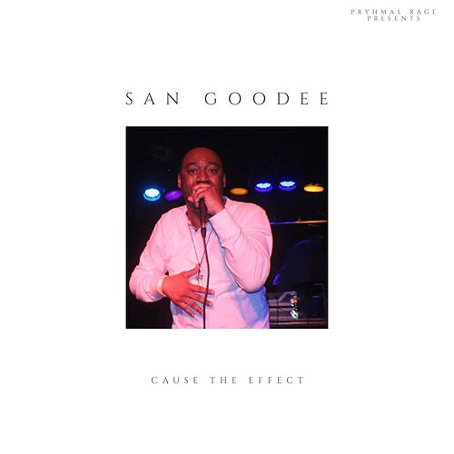 Cause the Effect by San Goodee