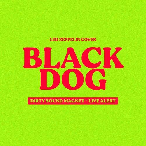 Black Dog (Live Alert - Dirty Sound Magnet Cover) fra Dirty Sound Magnet