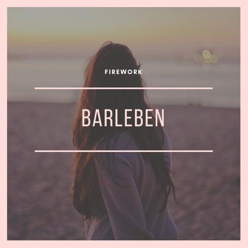 Firework de Barleben