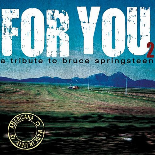 For You: A Tribute to Bruce Springsteen, Vol. 2 di Various Artists