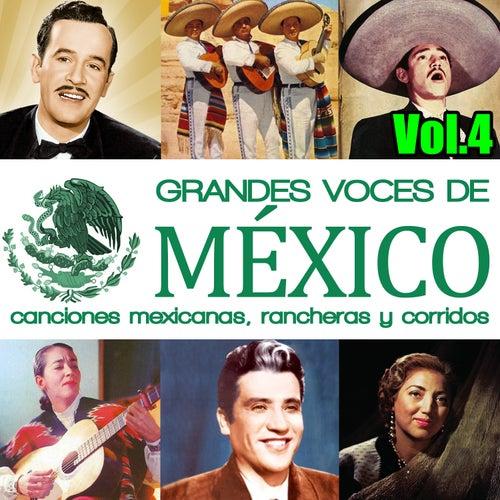 Grandes Voces de México. Canciones Mexicanas, Rancheras y Corridos Vol.4 de Various Artists