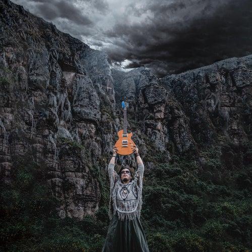 The Battle of African Phoenix von Joan Baez