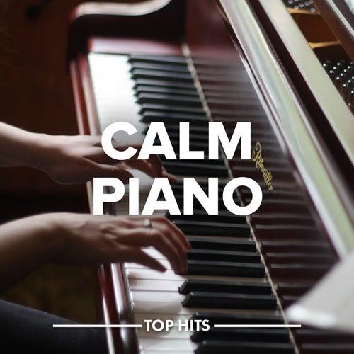 Calm Piano von Various Artists