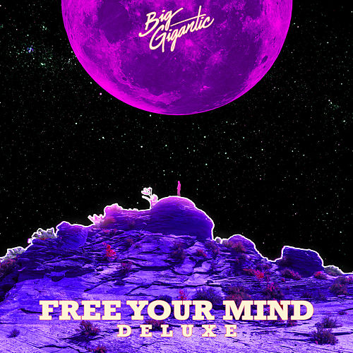 Free Your Mind (Deluxe Version) by Big Gigantic