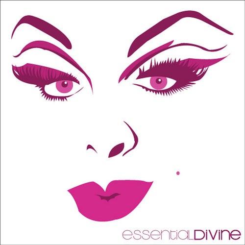 Essential Divine by Divine