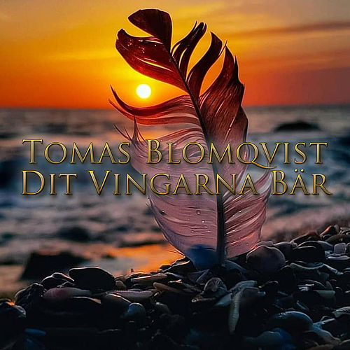 Dit vingarna bär by Tomas Blomqvist