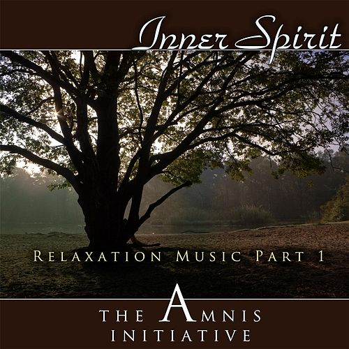 Relaxation Music Part 1: Inner Spirit - Single by The Amnis Initiative