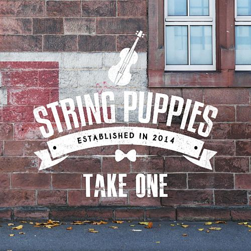 Take One de String Puppies