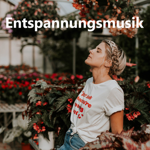 Entspannungsmusik by Various Artists