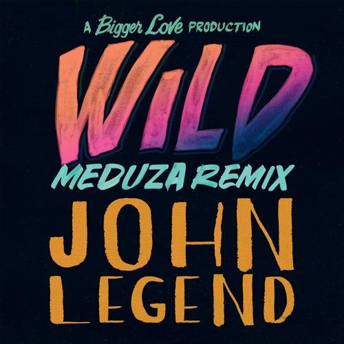 Wild (MEDUZA Remix) de John Legend