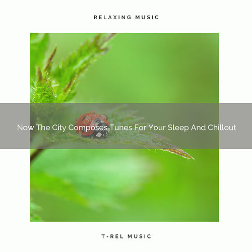 Now The City Composes Tunes For Your Sleep And Chillout by White Noise Sleep Therapy