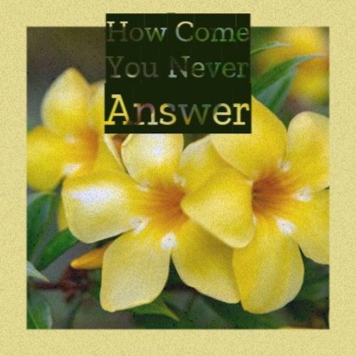 How Come You Never Answer von Husky, Ferlin, Ernie Lee