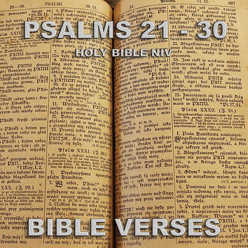 Holy Bible N.I.V. Psalms 21 - 30 by Bible Verses