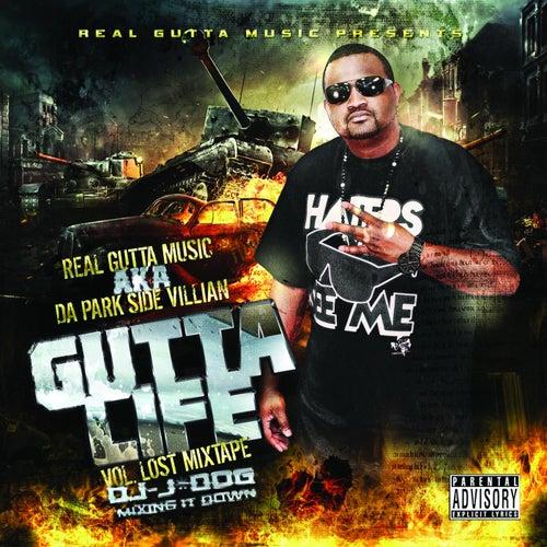 Park Side Villian Vol 1. by Real Gutta Music