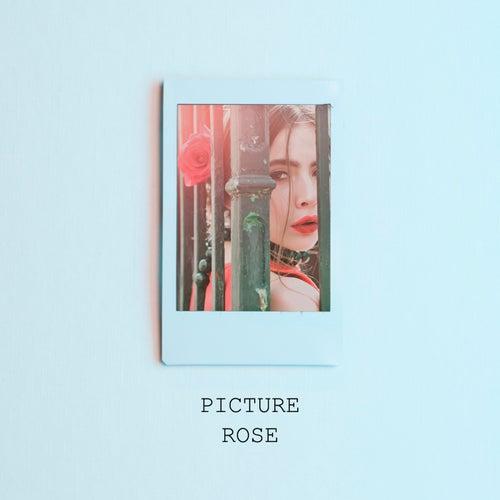 Picture von Rose