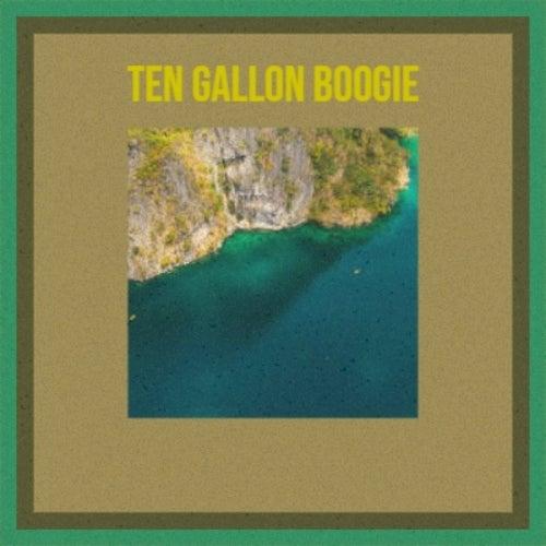 Ten Gallon Boogie von Various Artists