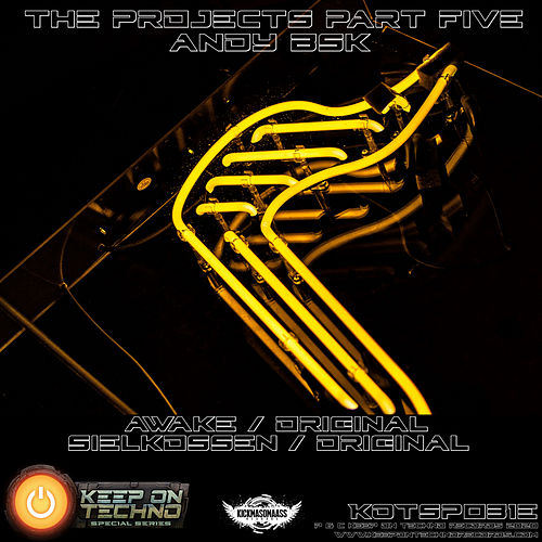 The Projects, Pt. 5 by Andy Bsk