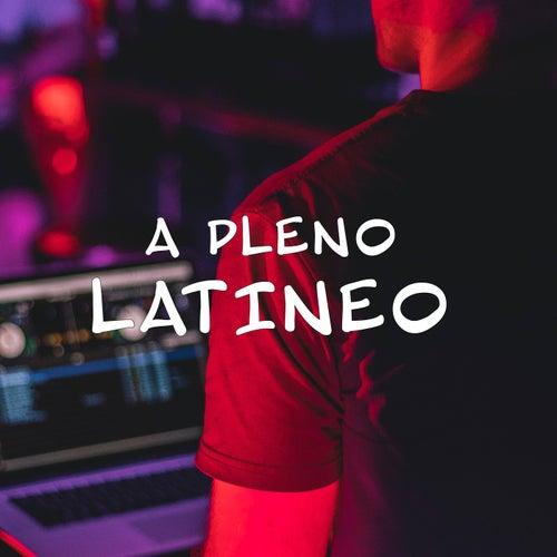 A pleno latineo von Various Artists