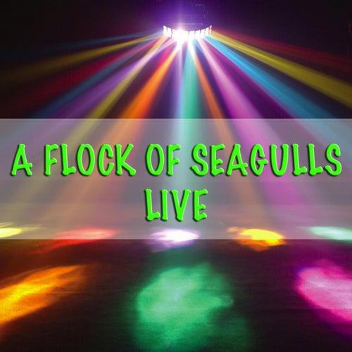 A Flock Of Seagulls - Live von A Flock of Seagulls