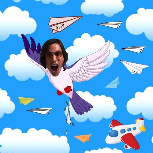 Fly by Zbrah