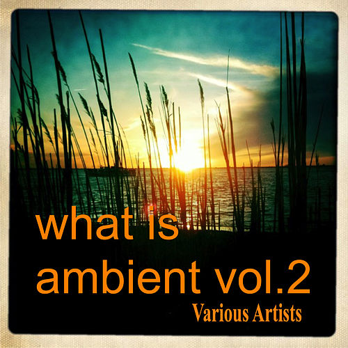 What Is Ambient Vol.2 von The Weather Station