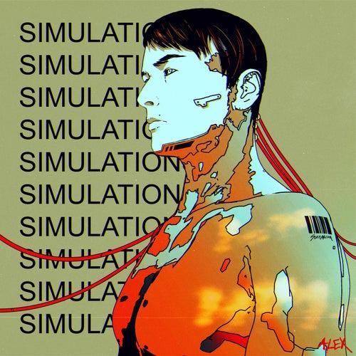 Simulations von ALEX